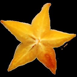 starfruit-icon.png